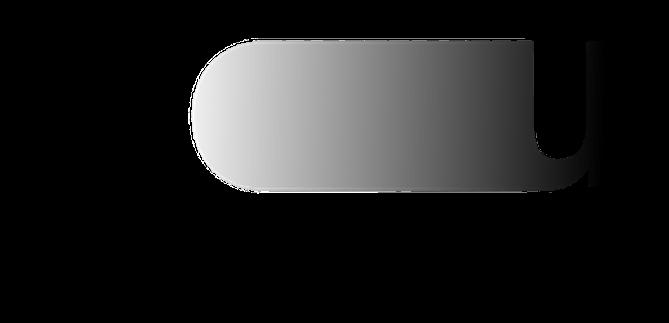 Logo Nochturnal Unrest